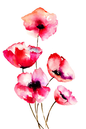 Red Poppy flowers, watercolor illustration  Stock Photo