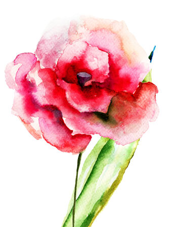 Colorful pink flower, watercolor illustration illustration