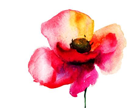 Stylized Poppy flower illustration  illustration