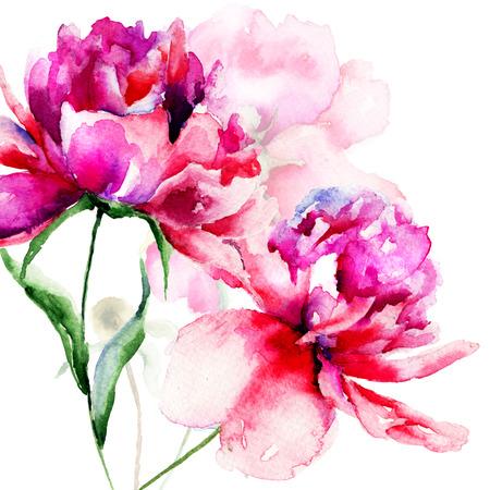 Mooie pioen bloemen, schilderen van de waterverf Stockfoto
