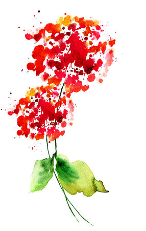 Wild flowers, watercolor painting  photo