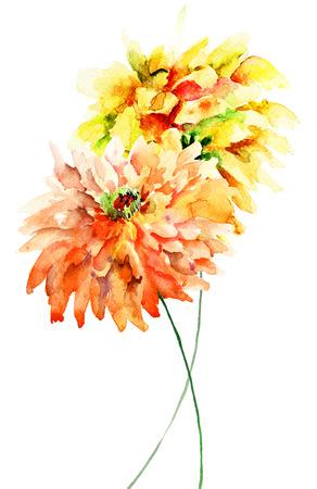 Decorative Gerber flowers, watercolor illustration