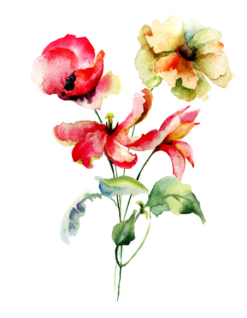 poppy flowers: Tulips and Poppy flowers, watercolor illustration