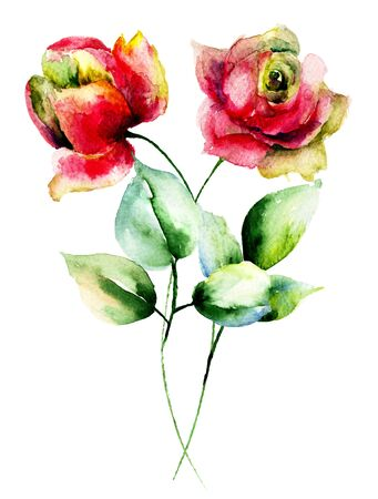 flower rose: Red Roses flowers, watercolor illustration Stock Photo
