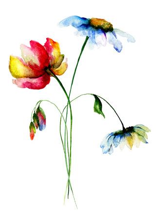 tulip: Kolorowe kwiaty polne, Akwarele ilustracji Zdjęcie Seryjne