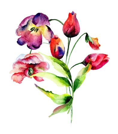 tulip: Piękne Tulipany kwiaty, akwarela ilustracja Zdjęcie Seryjne