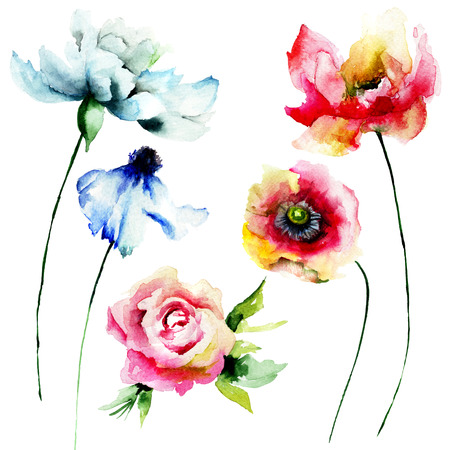 lily flower: Set of watercolor flowers. Hand drawn floral elements for design