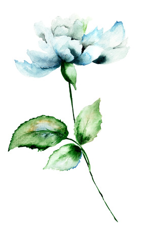 illustration and painting: Beautiful blue flower, watercolor illustration