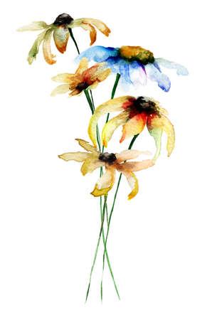 gerber daisy: Decorative Gerbera flowers, watercolor illustration