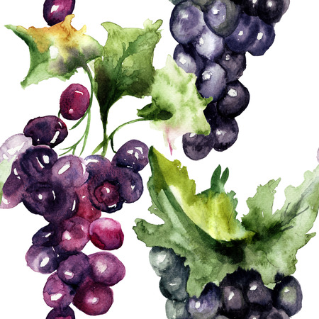 vine pear: Watercolor illustration with grape cluster, Seamless pattern