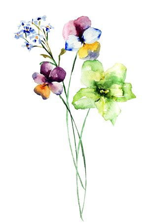 Watercolor illustration of beautiful wild flowers
