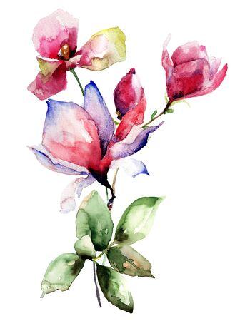 magnolia: Poppy and Magnolia stylized flowers, watercolor illustration Stock Photo