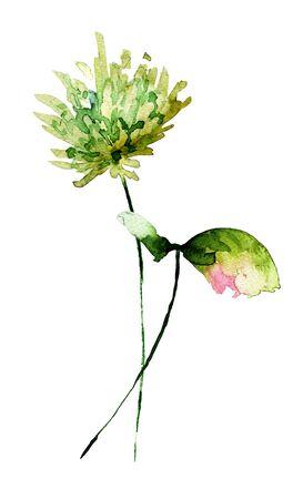 Stylized flowers watercolor illustration Stock Photo