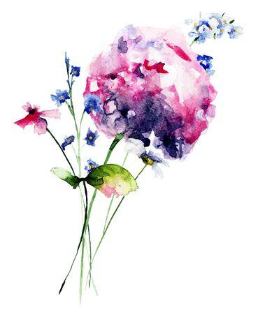 wild flowers: Beautiful wild flowers, watercolor illustration