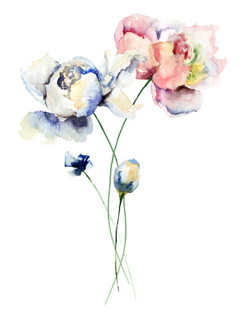 Colorful Peonies flowers, watercolor illustration Stock Photo