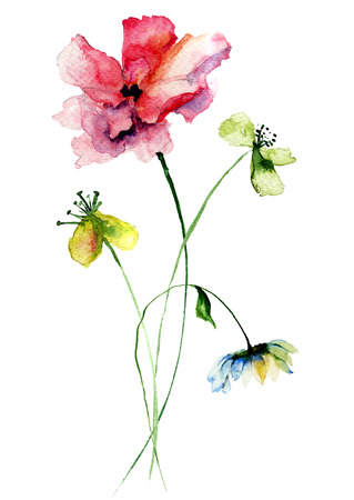 Wild flowers watercolor illustration Stock Photo