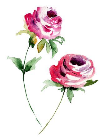 rosas rojas: Rosas rojas, pintura a la acuarela