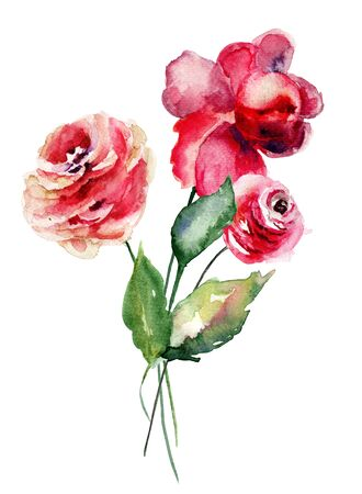 Red Roses flowers, watercolor illustration Stock Photo