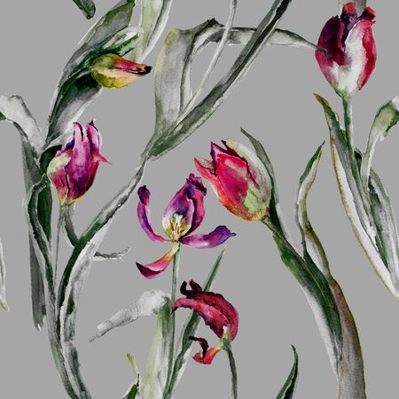 Seamless pattern withTulips flowers, watercolour illustration  Stock Photo