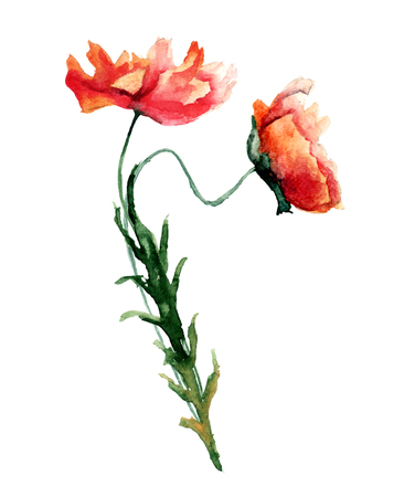 Template for card with with poppies flowers watercolour template for card with with poppies flowers watercolour illustration stock photo picture and royalty free image image 82201974 mightylinksfo