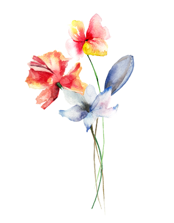 Beautiful spring flowers, watercolor illustration