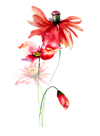 Template for card with Poppies and Gerbera flowers, watercolor illustration