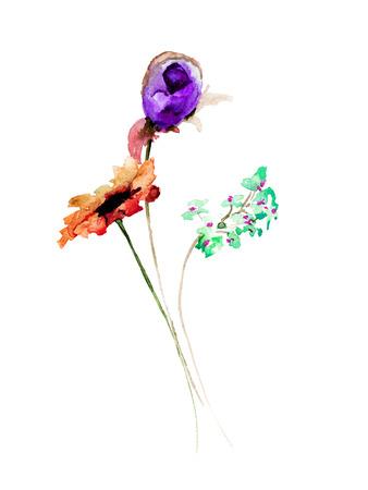 Stylized wild flowers, watercolor illustration