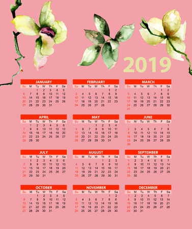 Template for calendar 2019 with Orchids flowers, watercolor illustration