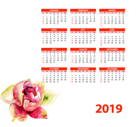 Template for calendar 2019 with beautiful Peony flower, Watercolor painting