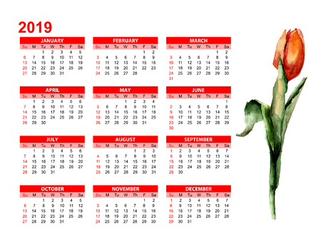 Template for calendar 2019  with Red Tulip flower, watercolor illustration