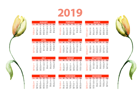 Template for calendar 2019 with Yellow Tulip flower, watercolor illustration