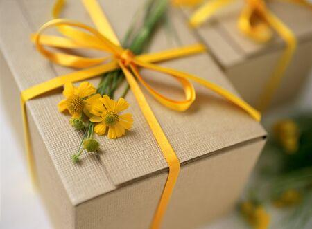 matricaria: gift box Stock Photo