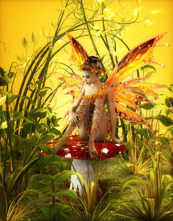 cute fairy: a little fairy is sitting on a fly agaric