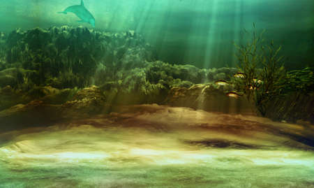 seabed: an underwater landscape with fishes and dolphin Stock Photo