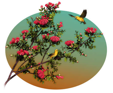 oahu: a decorative illustration with two Hawaiian birds