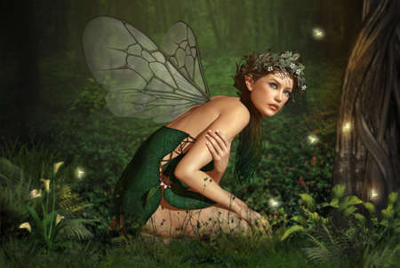 fantasy fairy: an illustration of a nymph who lives in the forest