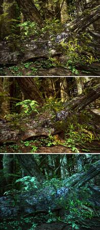 gnarled: 3d CG graphics jungle scene lighting in three variants