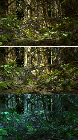 jungle scene: 3d CG graphics jungle scene lighting in three variants