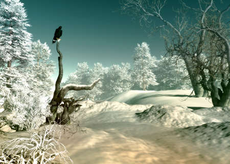 bird of prey: 3d computer graphics of a winter landscape with bird of prey Stock Photo