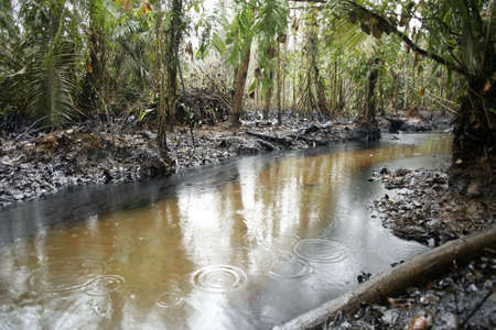 Oil spill in tropical rainforest, Ecuador photo