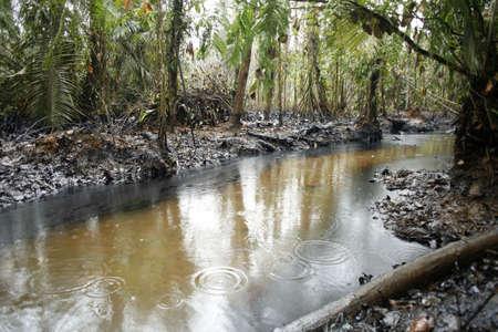 oil spill: Oil spill in tropical rainforest, Ecuador