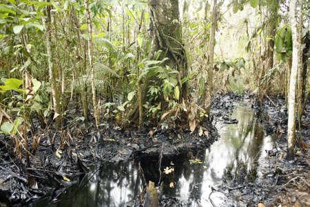 Oil spill in tropical rainforest, Ecuador