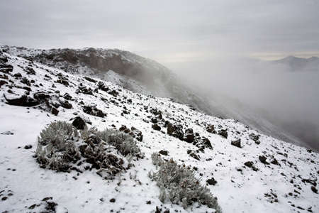 montane: View from Cotopaxi Volcano in the Ecuadorian Andes Stock Photo
