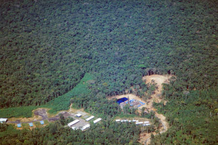 rainforest background: Road and oil wells in the Amazon Rainforest, Ecuador. Roads built into the Ecuadorian Amazon bring also colonists who cut down the forest.