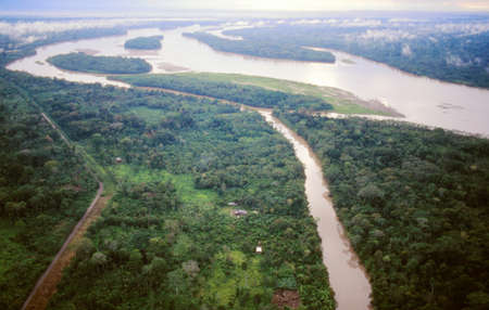 amazon river: The Rio Napo in the Ecuadorian Amazon viewed from the air, Rio Jivino in foreground and a road built by oil companies bringing colonists who cut the foreground forest