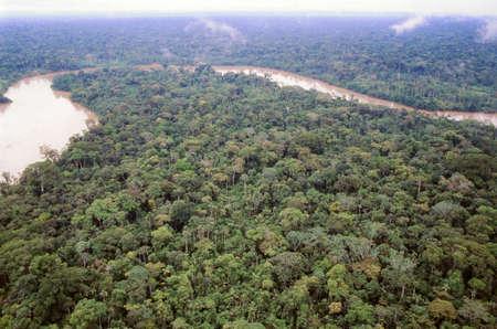 río amazonas: Bosque primario, visto desde el aire con el río Aguarico en el fondo, Ecuador Foto de archivo