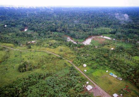 colonisation: Foresta amazzonica in Ecuador, primo piano, portando via i coloni che si sono abbattuti nella foresta, ma con la foresta primaria di l� del fiume sullo sfondo