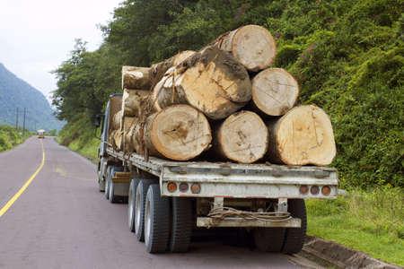 Trucking hout uit het Amazonegebied over de Andes in Ecuador Stockfoto