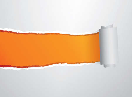 roll paper: Orange torn roll paper illustration