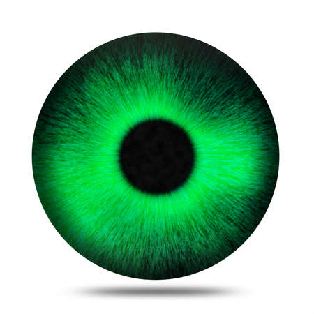 green eye: Isolated realistic green eye pupil against white background Stock Photo